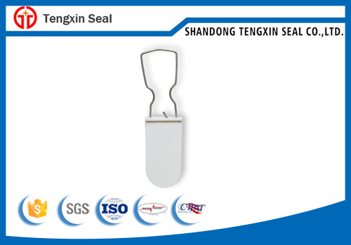 Container door padlock seal with serial number