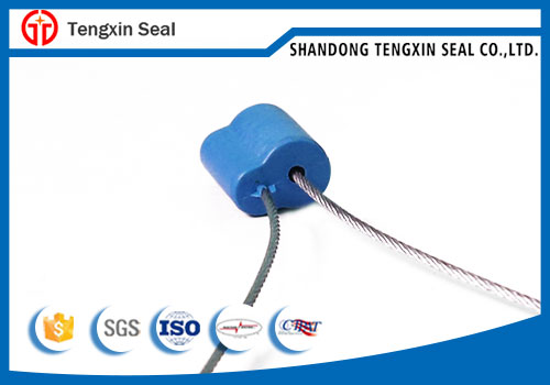 Single use pull wire container cable seal