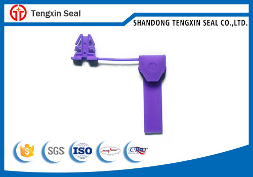 Plastic pad lock security meter seal for anti tamper