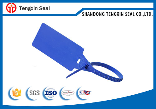 Disposable pull-tight locking plastic seal