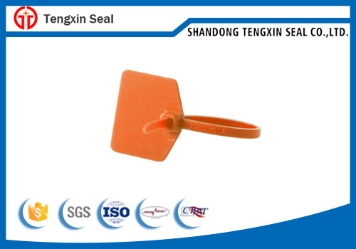Widely Use Best Quality plastic seal for fire extinguisher
