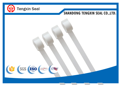 China hot popular high quality bank security plastic seal